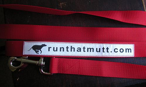 Personalized dog running leash