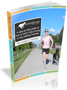 Ebook or book on how to start a dog walking, dog running or pet sitting business