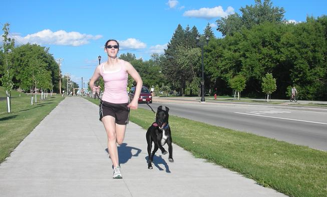 Fargo dog walking and dog running business with woman running a black lab mix in the summer