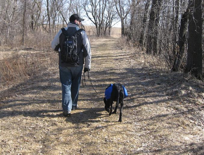 Man and black lab mix with a backpack walking together in the woods